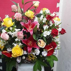 Cesta com rosas importadas